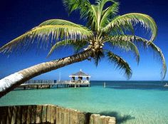 Let's move to Roatan.