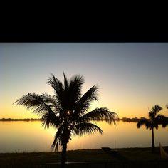 Florida morning!