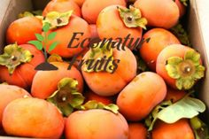 If you are looking to enjoy all the #nutritious values of a #fresh #tomato, you need to visit the #EconaturFruits. Here, you will #get all the #fresh #fruits and you can place your order at any time of the day.