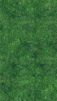 grass texture seamless mountain gimp patterns textures plant texture grass background texture mapping hand free high quality tileable seamless
