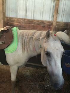 My pony Ghost