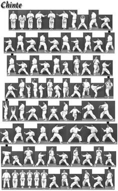 Find out how to incresase your guidance for martial arts techniques Wing Chun Martial Arts, Best Martial Arts, Kung Fu Martial Arts, Martial Arts Weapons, Martial Arts Styles, Martial Arts Techniques, Martial Arts Workout, Kyokushin Karate, Aikido