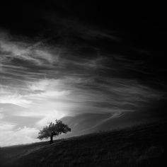 Andy Lee - fotografía