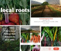 Local Roots - Connect with local farmers, food waste app