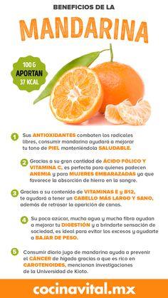 A medida que baja la temperatura y esperamos el invierno, el otoño se tiñe de tonos amarillos, café y naranja. Los mercados se comienzan a llenar de fruta de la temporada; entre ellas la mandarina, que alcanza su mejor momento en diciembre.