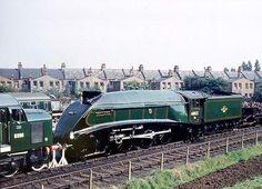 60022 Mallard Citroen Traction, Steam Railway, Train Pictures, British Rail, Steam Engine, Steam Locomotive, Paddle, Engineering, Childhood