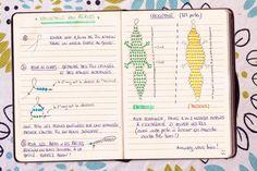 Shalima du blog Merci pour le chocolat, elle s'en souvient et l'explique dans ce dernier tuto de cette semaine, testé et approuvé par ses 3 korrigans Beaded Animals, Bullet Journal, Beads, Crafts, Images, 3d, Couture, Blog, Ponchos