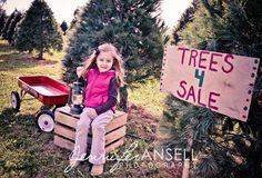 Cute Christmas Tree Farm, Christmas Pics, Posing Guide, Christmas Photography, Mini Sessions, Taking Pictures, Children Photography, Picture Ideas, Photo Ideas