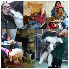 Today is National Have Fun At Work Day! Here at Playful Pups Retreat we ALWAYS have fun at work!