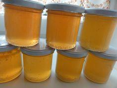Jak připravit náhražku medu ze smrkových výhonků | recept | JakTak.cz