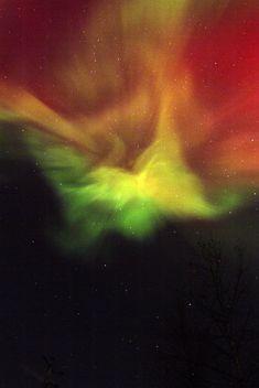 Breathtaking photos of the aurora borealis, captured by an expert photographer.
