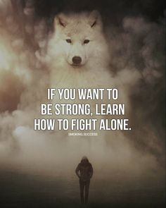 Are you looking for motivational speeches, or motivational videos? Browse our collection of the best motivational articles and compilations. Lone Wolf Quotes, Lion Quotes, Animal Quotes, Wisdom Quotes, True Quotes, Best Quotes, Hillsong United, Quotes Dream, Quotes To Live By