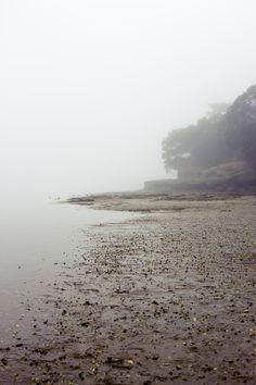 more fog. pt chev.