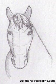 How to create a horse head drawing using pencil step-by-step - Easy and Cartoon . How to create a horse head drawing using pencil step-by-step – Easy and Cartoon Horse Drawing Tut Easy Horse Drawing, Horse Drawing Tutorial, Horse Head Drawing, Horse Drawings, Animal Drawings, Pencil Drawings, Drawing Tutorials, Drawing Ideas, Cartoon Cartoon