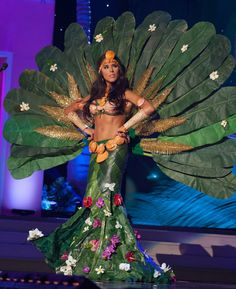 Miss Universe 2015 National Costume Review | touchemagz