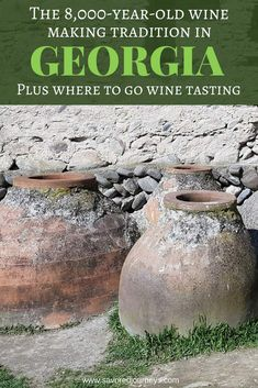 Visit these top wineries in Georgia to learn all about the winemaking traditions and taste some really great wine Sweet Champagne Brands, Wine Party Appetizers, Wine Leaves, Wine Tasting Party, Wine Sale, Wine Baskets, Types Of Wine, Growing Grapes, Wine Delivery