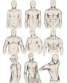 How to draw the human body study male body types comic manga character refe Arte Com Grey's Anatomy, Man Anatomy, Anatomy Art, Body Anatomy, Anatomy Study, Drawing Body Poses, Body Reference Drawing, Art Reference Poses, Drawing Tips