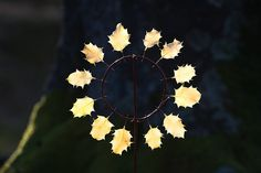 Holly Leaf Sun Clock by Richard Shilling