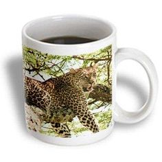 3dRose You looking at me Leopard in tree in Tanzania., Ceramic Mug, 11-ounce