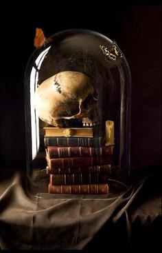 Elisandre - L'Oeuvre au Noir: Vanités et Natures-mortes revues par l'objectif de Kevin Best.