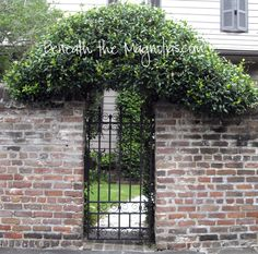 Outdoor Spaces Landscape Design for privacy with brick and iron fencing Old Brick Wall, House Yard, Old Bricks, Iron Gates, Gate Design, Garden Gates, Garden Styles, Charleston, Landscape Design