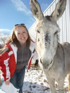 The Mayor of HeidiTown visits Longhopes #Donkey Shelter in Bennett, #Colorado. http://www.heiditown.com/2014/07/07/heiditown-gives-back-people-compassion-pets/