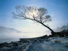 Hauntingly beautiful winter scene in China.