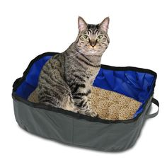 Petacc Foldable Cat Litter Box Portable Travel Pet Litter Pan Outdoor Cat Box, Grey -- Read more at the image link. (This is an affiliate link) Litter Pan, Waterproof Fabric, Diy Dog Bed, Outdoor Cats, Pet Travel, Cat Supplies, Cat Gif, Cats And Kittens, Cat Art