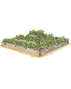 Tiered Strawberry Raised Beds -- We built three of these last fall and they only cost us about $8 each.  It doesn't save on square footage, but is prettier because of the dimension.