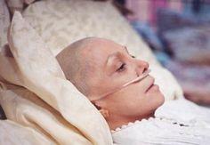 암에좋은음식 암치료의 꿈을 현실로! sparassis cnspa