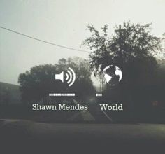 love Shawn Mendes