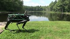 Boston Dynamics builds advanced robots with remarkable behavior: mobility, agility, dexterity and speed.  The company uses sensor-based controls and computation to unlock the capabilities of complex mechanisms.