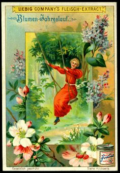 """Liebig's Beef Extract ~ The Course of Human Life ~ """"Blumen Jahreslauf"""" (Flowers in the Year) German issue, 1901 Vintage Ephemera, Vintage Cards, Vintage Postcards, Vintage Images, Domino Art, Hedging Plants, Fairy Pictures, Museum, Ideas"""