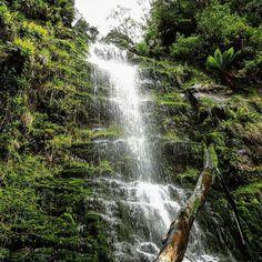 Not a bad little trickle #lorne #melbourne #victoria  #australia #nature #naturephotography #instapic #adventure  #healthyliving #health #fitness #outandabout #12apostles #jungle #trekking #secretspot #like4like #instadaily #slimtimetea by andy_diliz http://ift.tt/1IIGiLS