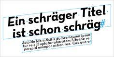 Dreh- und Scherwinkel in InDesign per Skript zuweisen Adobe Indesign