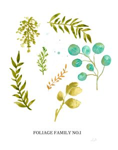 Vintage inspired - Foliage Chart watercolor poster print