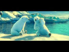 The Coca-Cola Polar Bears: Jak and Zook