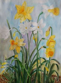 Daffodils watercolour on paper by A ,Shah Daffodils, Watercolour, Paper, Painting, Color, Beauty, Art, Pen And Wash, Art Background
