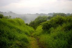 Zuchitlán, Comala Mx. Mis caminos