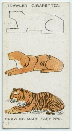 How to Draw Animals (a mere 3 easy steps to tigers)