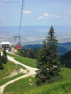 From the top of Postavarul Mountain Tourist Places, Mountain Resort, Romania, Places To Visit, Hiking, Mountains, Country, Track, Top