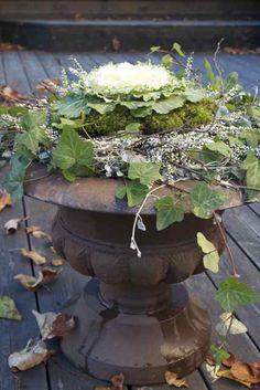Ornamental Cabbage urn
