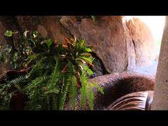 ▶ Organic Modern Estate by Ken Kellogg AIA - Joshua Tree, CA - YouTube