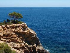 Tauchen rund um Ibiza Echte Insidertipps zu den schönsten Tauchplätze, den besten Tauchbasen