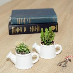 Watering Can Shaped Mini Planter. Christmas gift for gardener idea