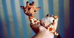 Anna Nazarenko známa aj ako Oso polar tvorí handmade zvieratká z polymérovej hmoty fimo, používa aj kožušinky, kožu a iný materiál. Hračky, postavičky