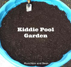 "Kiddie Pool Garden - we planted herb seeds to create an ""edible forest"" for small world play!"