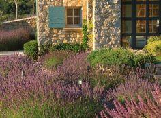 1326 meilleures images du tableau jardinage rustica en 2019 jardin potager carr potager et. Black Bedroom Furniture Sets. Home Design Ideas