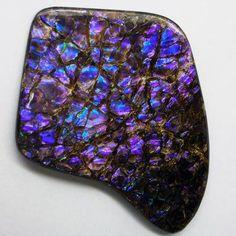 beautiful-minerals:   Purple Blue Ammolite