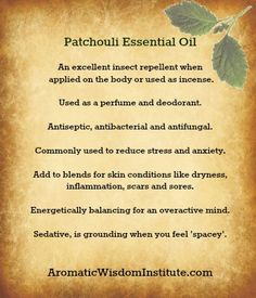 Essential Oils (can't more live without them Patchouli Essential Oil - Great for skin and nerves! Patchouli Essential Oil, Essential Oil Uses, Natural Essential Oils, Patchouli Oil, Young Living Oils, Young Living Essential Oils, Natural Healing, Natural Oils, Healing Oils